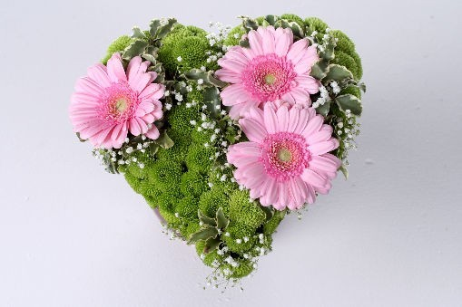 оптовые базы в саратове цветы в, доставка цветов ижевск и анимация цветы.