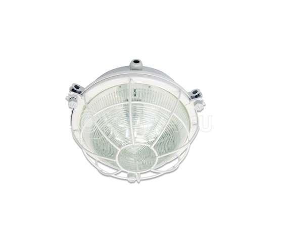 Светильник ЛОН НПП03-100-001 1х100Вт E27 IP65