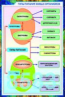 Плакаты Введение в экологию, фото 1