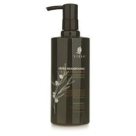 Vieso Apres-Shampooing Argan Oil Exstreme Repair CONDITIONER 400ml