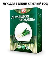 Чудо-набор для выращивания овощей и зелени дома «Сказочный огород круглый год» без ГМО (Лук зеленый)