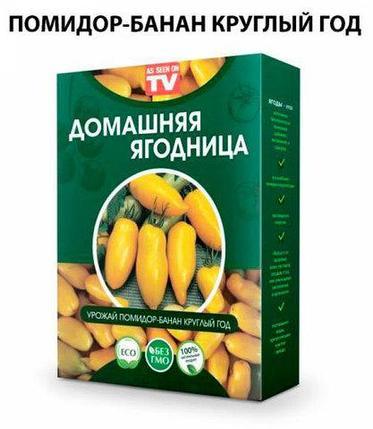 Чудо-набор для выращивания овощей и зелени дома «Сказочный огород круглый год» без ГМО (Помидор-Банан), фото 2