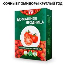 Чудо-набор для выращивания овощей и зелени дома «Сказочный огород круглый год» без ГМО (Огурцы), фото 2