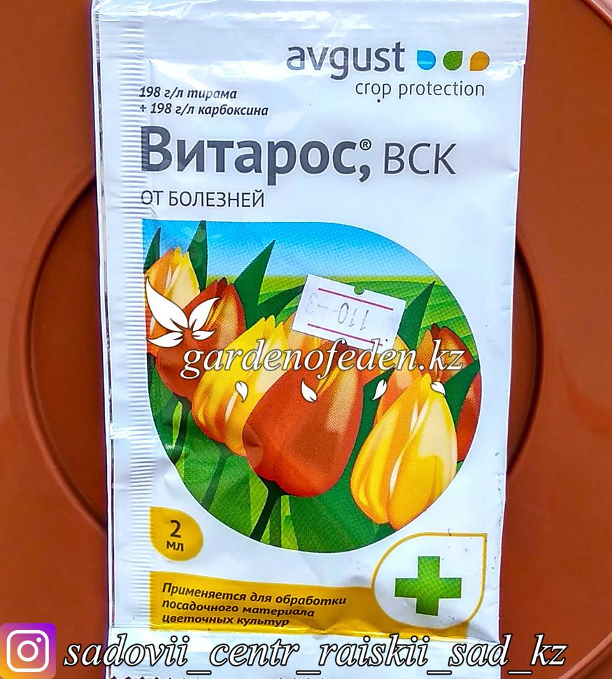 """Avgust. Средство от болезней растений """"Витарос ВСК"""". 2мл."""