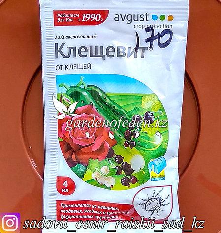 """Avgust. Средство от клещей на растениях """"Клещевит"""". 4мл., фото 2"""