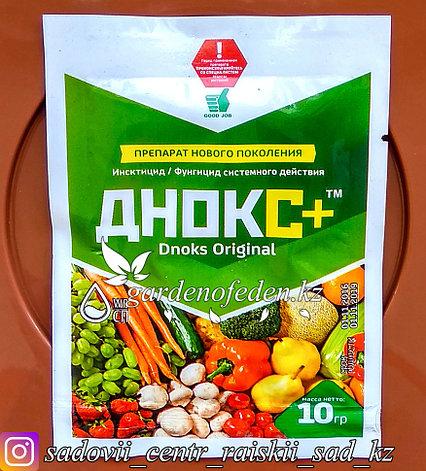 "Agrovet Trade. Фунгицид системного действия ""Днокс+"". 10гр., фото 2"