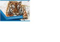 """Альб д. рис 20л скр А4 8567-EAC ВД лак """"Тигр"""""""