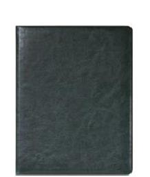 Датированный ежедневник SILVANO, A5 зеленый