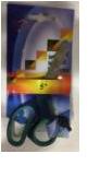 Ножницы для творчества Dolphin №5
