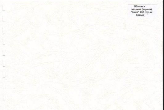 Обложки картон глянец iBind А3/100/250г белые, фото 2