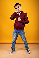 Трикотажный джемпер для мальчика