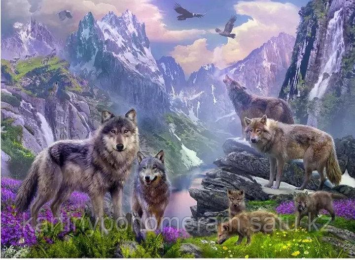 """Картины по номерам """"Стая волков"""""""