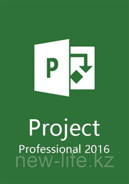 Microsoft Project 2016 Professional, ESD, 1PC