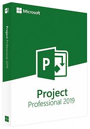 Microsoft Project 2019 Professional, ESD, 1 ПК