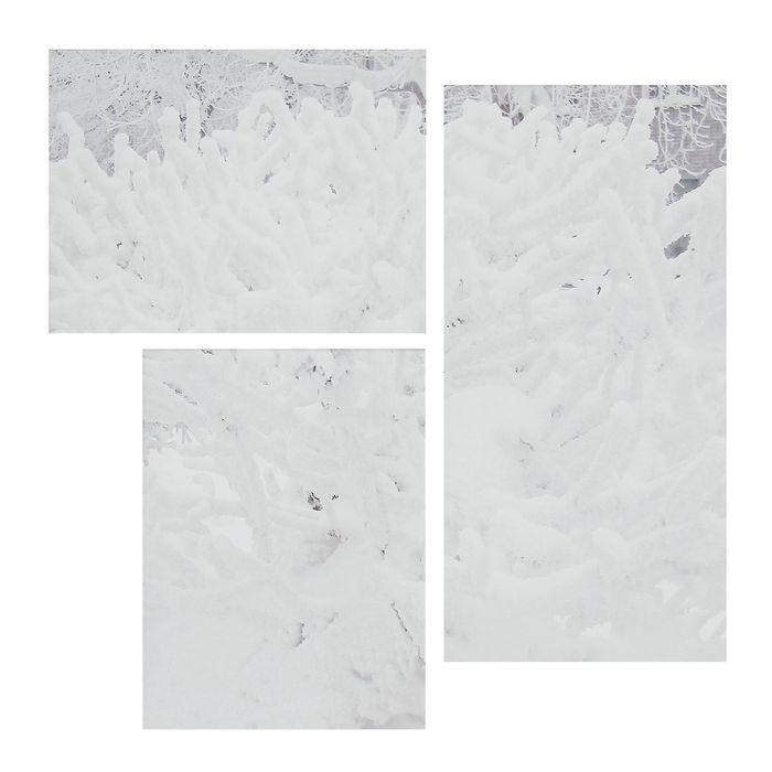 """Модульная картина на подрамнике """"Иней"""", 40×30, 30×40, 30×60 см"""