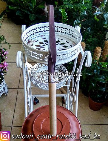 Корнеудалитель, длина 60 см, деревянная ручка., фото 2
