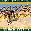 Фанера ФСФ влагостойкая (Сосна)   2440*1220*12   Сорта ФС НШ, фото 4