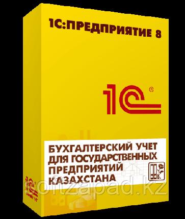 1С:Предприятие 8. Бухгалтерский учет для государственных предприятий Казахстана, фото 2