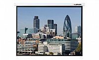 Экран для проектора моторизированный LUMIEN LMC-100113