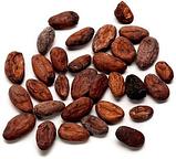 Какао-бобы отборные необжаренные, 200 г, фото 5