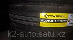 constancy_ecosmart12_3.jpg