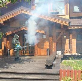 Фумигация древесины