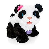 FRF малыш Панда, фото 1