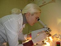 Лабораторная диагностика для всех видов животных