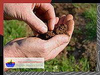 Лабораторные исследования грунтов и дорожно-строительных материалов