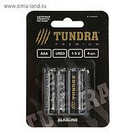 Батарейка алкалиновая TUNDRA, AAA ,LR3, блистер, 4 шт.