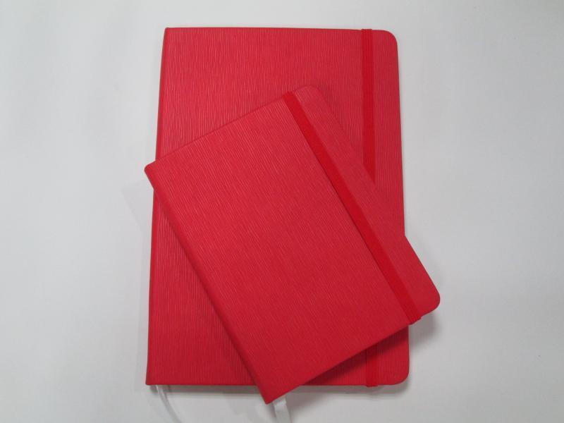 Молескин А6, красный, с тиснением под шильду