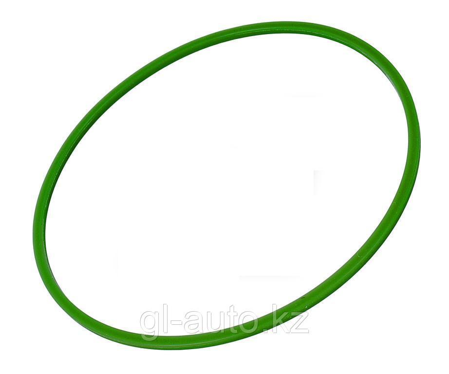 Кольцо уплотнительное водяного насоса (БРТ)