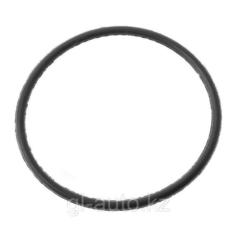 Кольцо уплотн.бензонасоса ГАЗель