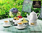 Заварочный чайник Wilmax 850 мл (фирменная коробка), фото 3
