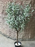 Дерево Олива гелиевая ботаническая копия