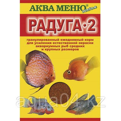 РАДУГА-2