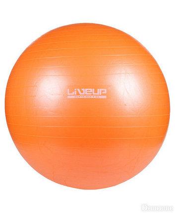 Мяч гимнастический для фитнеса GymBall LIVE UP [55, 65, 75 см, антивзрыв] с насосом (65 см), фото 2