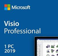 Visio Professional 2019, ESD, 1PC