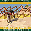 Фанера ФСФ влагостойкая (Сосна) | 2440*1220*18 | Сорта ФС НШ, фото 4