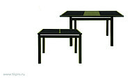 Стол обеденный Жасмин С 680х950(1250)х750