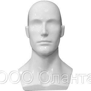 Голова мужская демонстрационная глянец арт. SH123