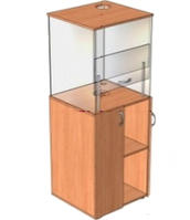 Шкаф демонстрационный вытяжной для кабинета химии (600х580х1700 мм) арт. ШВ-2