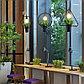 Светильник подвесной (люстра с растением), фото 2