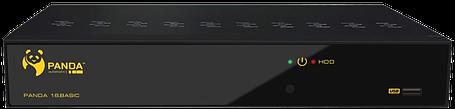 Гибридный видеорегистратор Panda 16.basic, фото 2