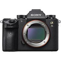Sony Alpha A9 body, фото 1