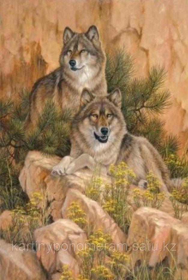 """Картина по номерам """"Волки на скале"""""""