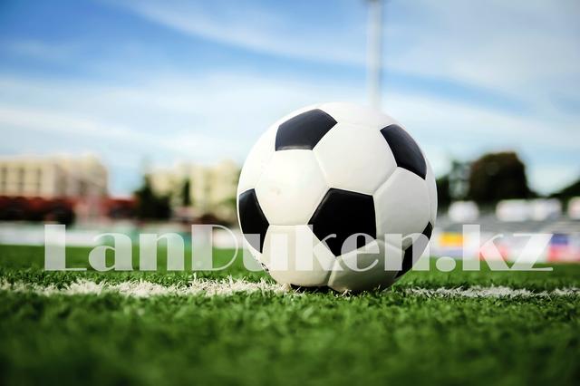 Футбольный мяч черно-белый