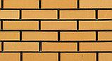 Кирпич Облицовочный одинарный 250*60*65 соломенный , фото 2