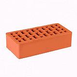 Кирпич Облицовочный одинарный 250*60*65 морковный, фото 2