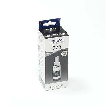Чернила Epson T6731 Black, фото 2